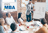 Mini MBA: Strategic, Operational & Tactical Leadership